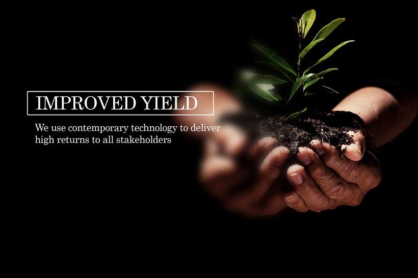 high-yield-1024×682